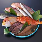 ZENSTYLE一作 - 料理写真:毎日、市場から届く鮮魚。