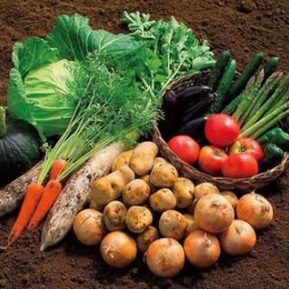 【発がん・糖尿病リスク回避】「減農薬」野菜・お米の導入推進