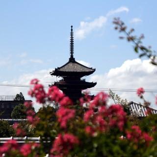 京都らしい眺め「八坂の塔」をご覧いただけます