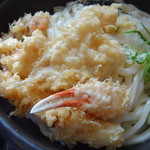 つづみ - 海鮮天ぷらぶっかけ
