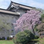 空也 - 国立博物館の庭園が、開放されていました。
