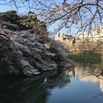 空也 - 千鳥ヶ淵の桜
