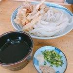 玉藻うどん - 料理写真:げそ天ざる