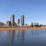 麺笑 コムギの夢 - 上野公園