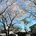 今川焼千駄木 - 近場の由緒ありそな小公園