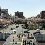 天ぷら  やました - 国立駅から見えた桜並木