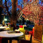 キハチ - テラス席は桜の生花がディスプレイされてたよ。