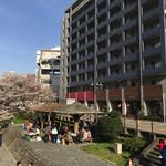 83500834 - 店舗前の松川べりの桜は満開