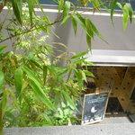 ガウディの舌 - 店内からの眺め