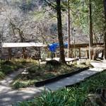 カントリーレストラン 渓流荘 - 母屋を過ぎたら自然溢れる店内の様子
