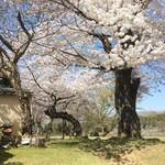 83606357 - 二月堂参道…奈良的風景