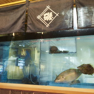 鮮度抜群!!店内生け簀完備、旬の鮮魚をお届け!