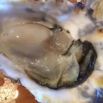 海鮮&ダイニング トルバドール - 志摩のブランド牡蠣 華カキ