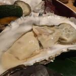 四季彩 葉月 - 厚岸産生牡蠣(アップ)