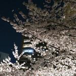 バビーズ ニューヨーク アークヒルズ - アークヒルズの夜桜