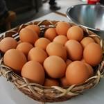 三嶋製麺所 - 卵たくさん