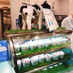 生クリーム専門店 Milk -
