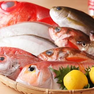 毎日替わるとれたて鮮魚料理