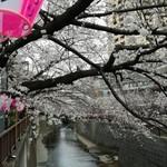 香食楽 - 目黒川の春2