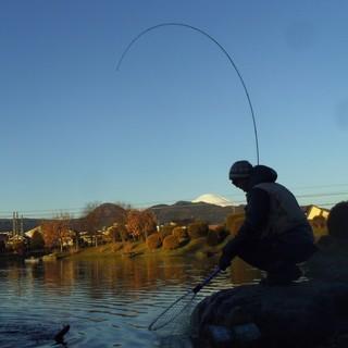 興味がわいたらlet'sfishing!!