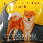 ミュゼ・ドゥ・ショコラ・テオブロマ 本店 - HACHI