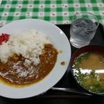 セントポーリア - 料理写真:カレーライス 735円