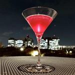 DRAWING HOUSE OF HIBIYA - Chsmopolitan Shiso(Reccomend Cocktails)