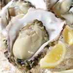宮崎県日南市 塚田農場 - 岩牡蠣