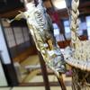 民宿ふじや - 料理写真:骨酒のために囲炉裏端で燻されるイワナ。