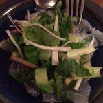 root - 真鯛とウドとセリのカルパッチョ