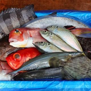 南房総の朝獲れ鮮魚を提供。旬が際立つ味わいをお楽しみください