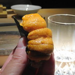 菊鮨 - ◆雲丹(歯舞)・・粒が大きく美味しいこと。
