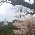 兵六玉 - 日和山公園☆
