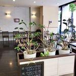しの笛茶房 - カウンター席・テーブル席が並ぶ店内