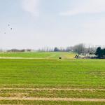町村農場 ミルクガーデン -