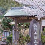 84569408 - 長興山紹太寺