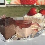 風工房 - 奥から、苺ロール、苺のショートケーキ、苺ザーネ、ショコラザーネ