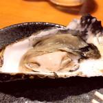 84619248 - 生牡蠣