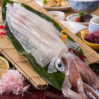 イカ活造り発祥「河太郎」の活魚料理。甘く透き通る活イカを堪能