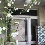 慈雨 - アルミのドアに、モッコウバラが優しく包みます(2018.4.23)
