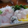 Gyosanjin - 料理写真:◆刺身(ヒラマサ、クエ、クエの皮、サクラマスの卵) 量もタップリですし、どれも新鮮で美味しいこと。
