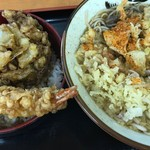 84676855 - 天丼セット(500円)+かき揚げ(90円)
