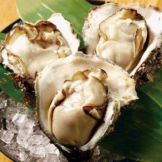 うまさぎっしり日本海の旬味覚!岩牡蠣・鮎!