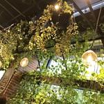 青山フラワーマーケット ティーハウス - 店内