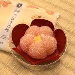 亀井製菓 - 料理写真:道後つばき花餅
