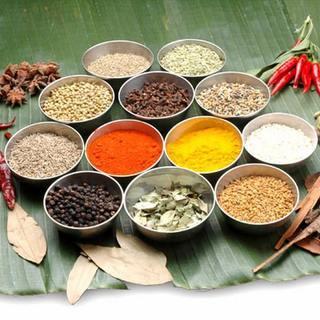 科学調味料・添加物などを一切使わない本格自然派インド料理。