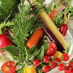 スポーティフ カフェアンドレストラン - 季節野菜のバーニャカウダー
