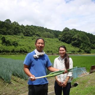 関西では珍しい白ネギを使用した、こだわりの一杯をご堪能あれ!