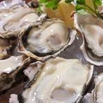 マリスコ - 国内外の旬の牡蠣が年中食べれます。