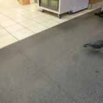 梅もと - (おまけ画像)なんと、店先には、ハトの姿